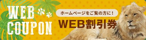 WEB割引